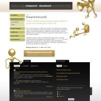Projektový manažer - kompetenční profil