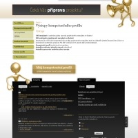 Projektový manažer - stránky výstupů z části projektu